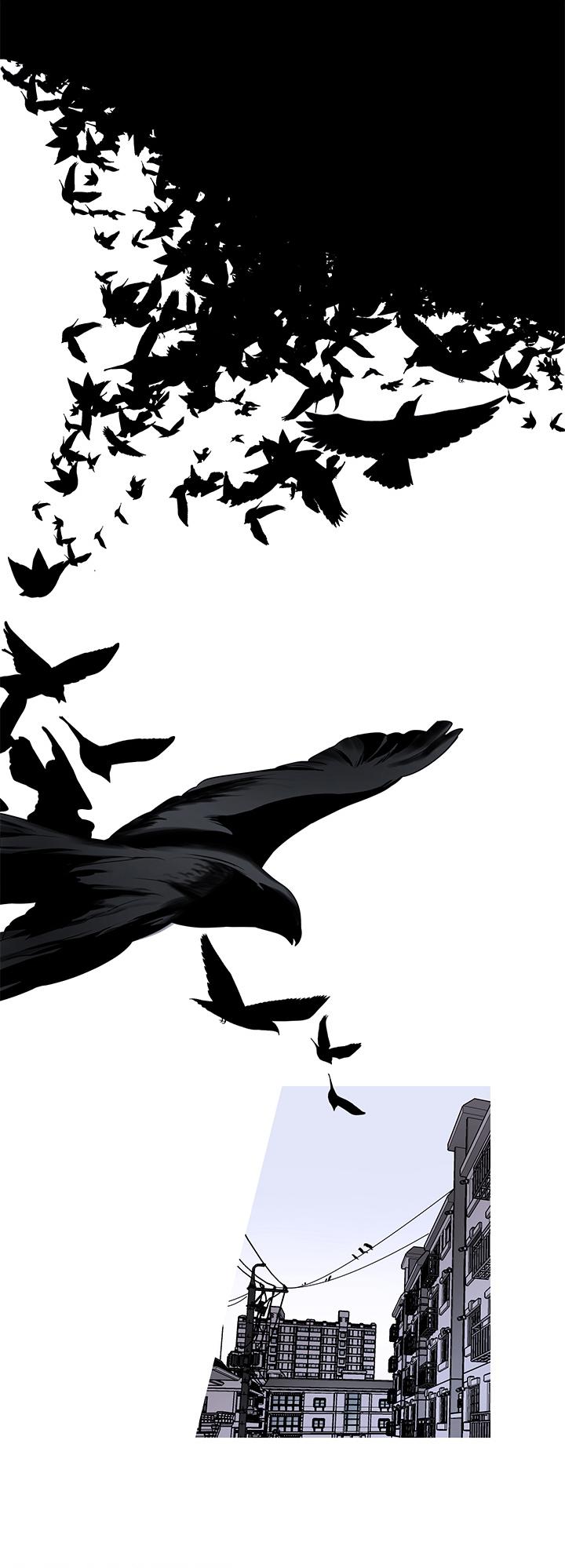 不飞的鸟-漫画完整版全集_下拉式在线阅读-啵乐漫画
