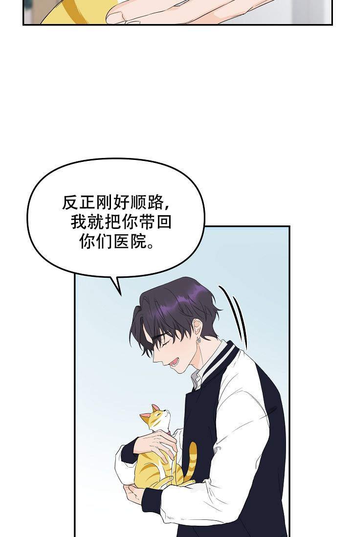 老虎花-漫画完整版全集在线阅读_最新连载首发-啵乐漫画
