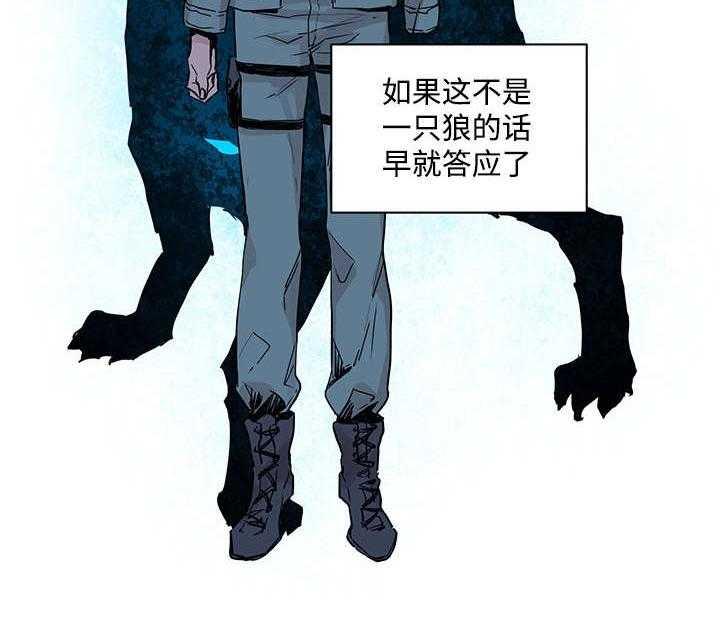 巫师与狼-漫画完整版全集在线阅读连载首发更新至21话-啵乐漫画
