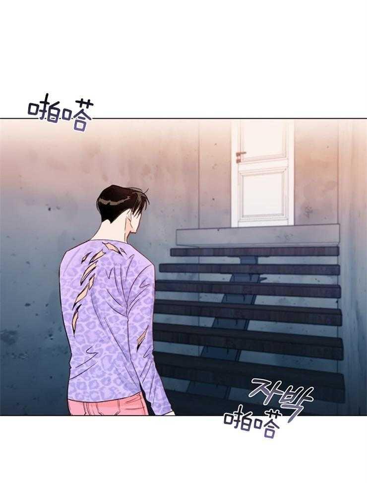 《大佬穿成炮灰小明星后》漫画韩漫耽美BL啵乐 全集在线观看