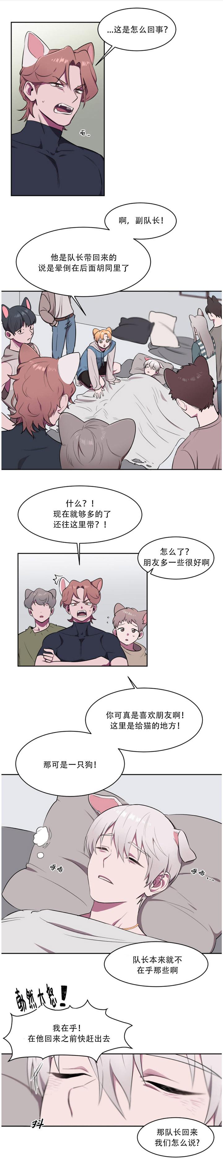 《爱的抉择》漫画完结韩漫 — 全集免费漫画阅读